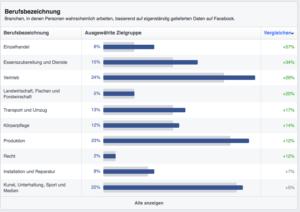 Audience Insights: Berufsbezeichnung